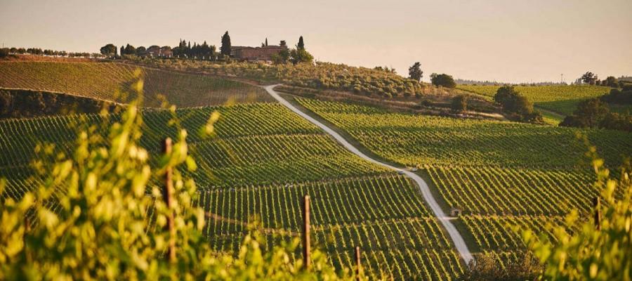 Colline nel Chianti in Toscana